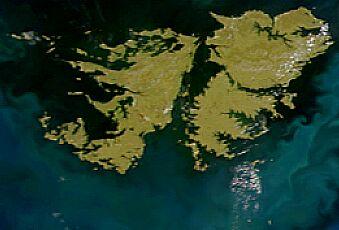 FileSatellite image of Falkland Islands in November 1999jpg