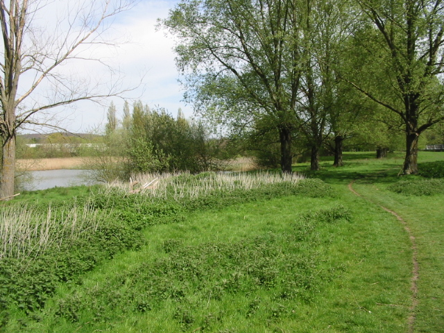 The Stour Valley Walk along the River Stour - geograph.org.uk - 783080