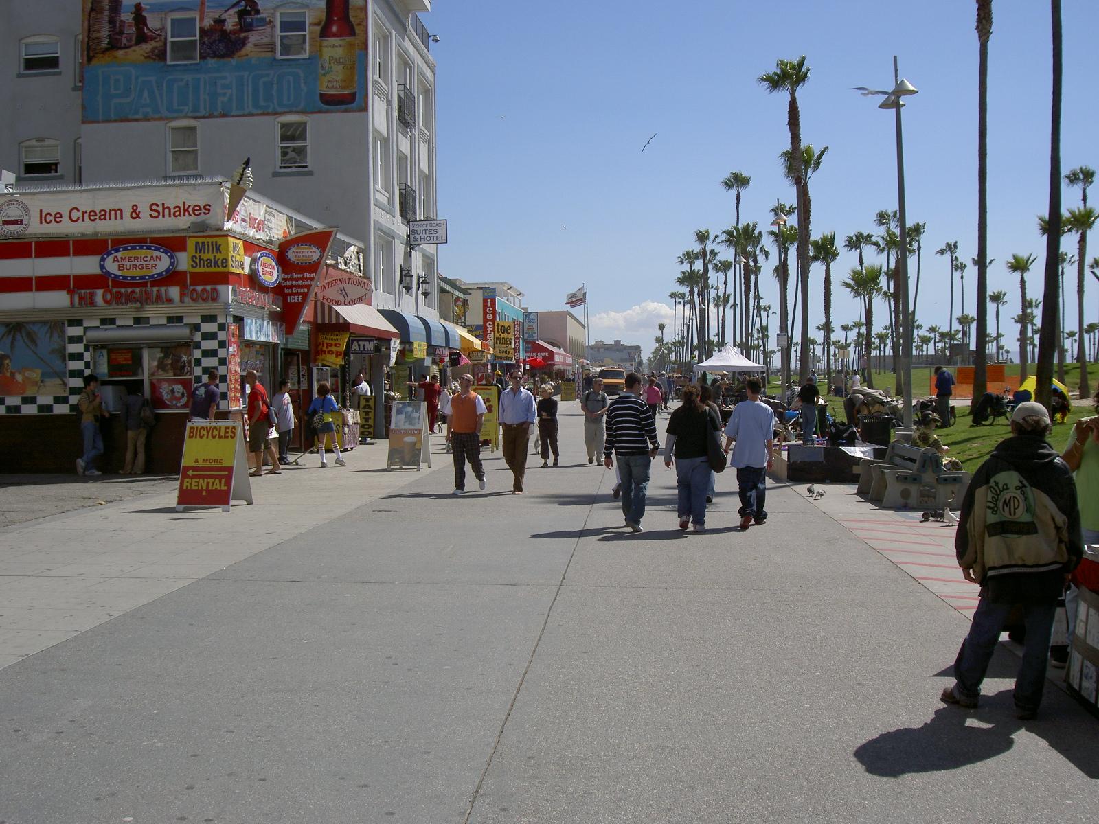 Venice Beach Apartments Craigslist