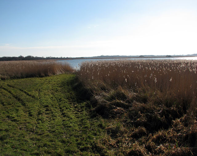 View across Hickling Broad - geograph.org.uk - 1151866