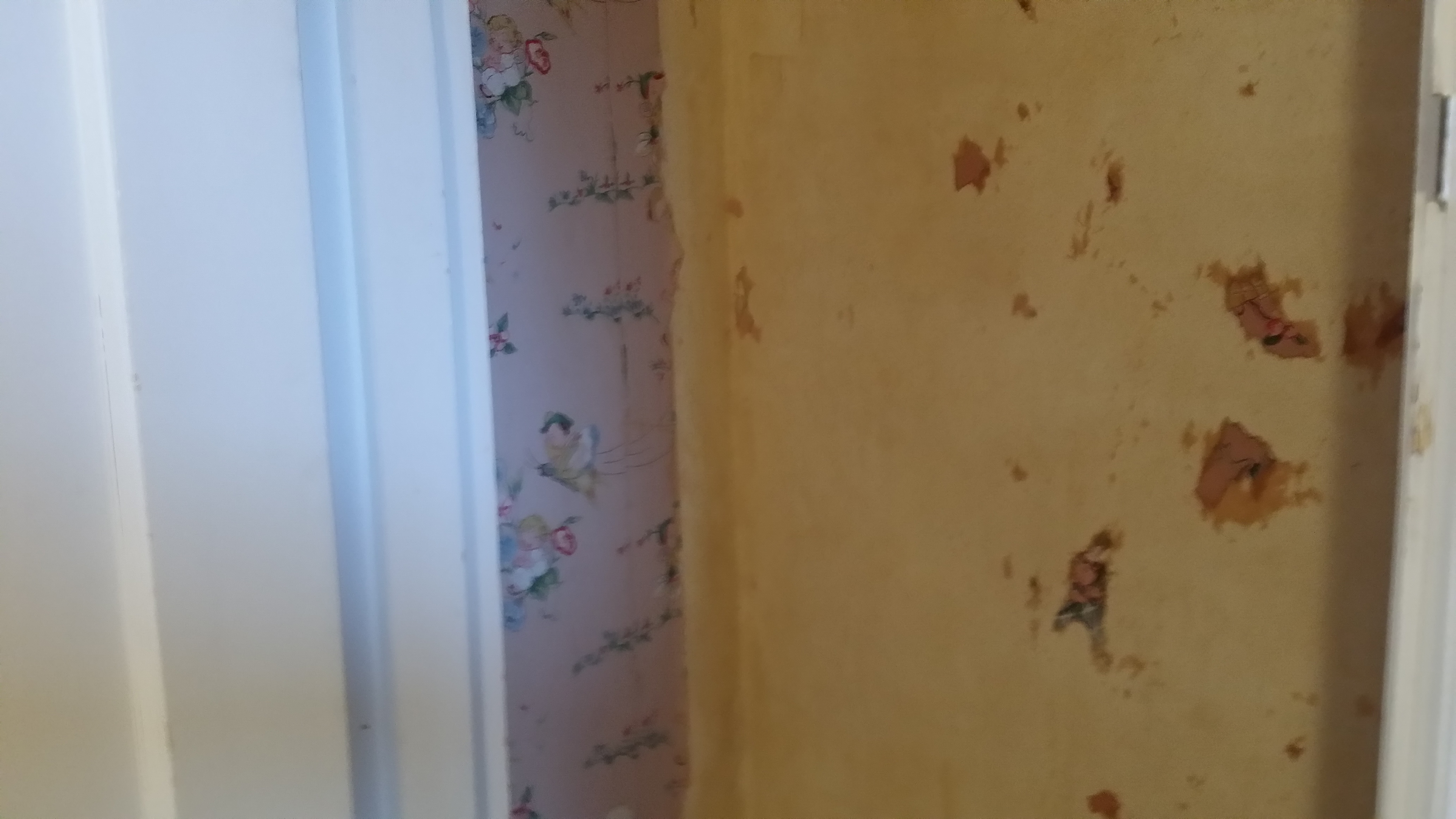 File Wallpaper Removal Portland Cascade Painting and Restoration