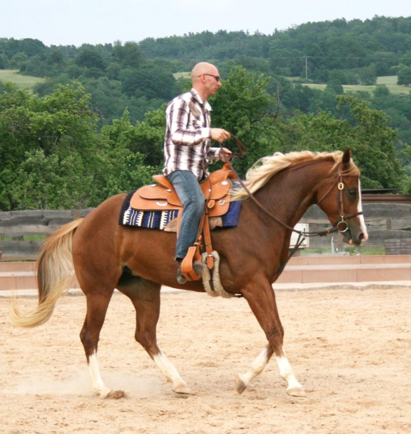 Http Kbd Wikipedia Org Wiki Western Riding Jpg