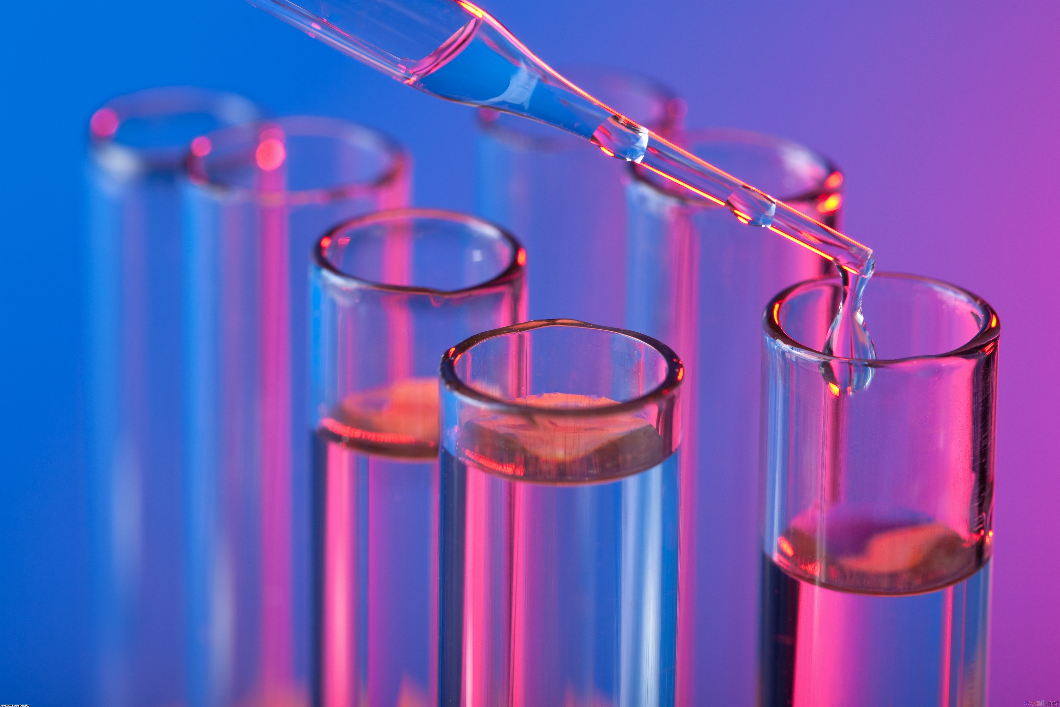 Northwest Biotherapeutics (NWBO) Stock Finds Tough To Cross The Recent Resistance