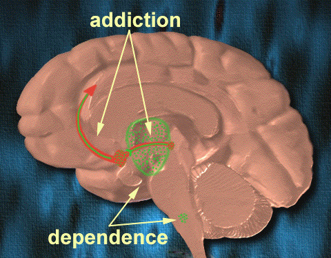 File:Addictiondependence1.png