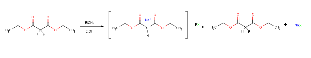 Alkylation of enolate ions[edit]