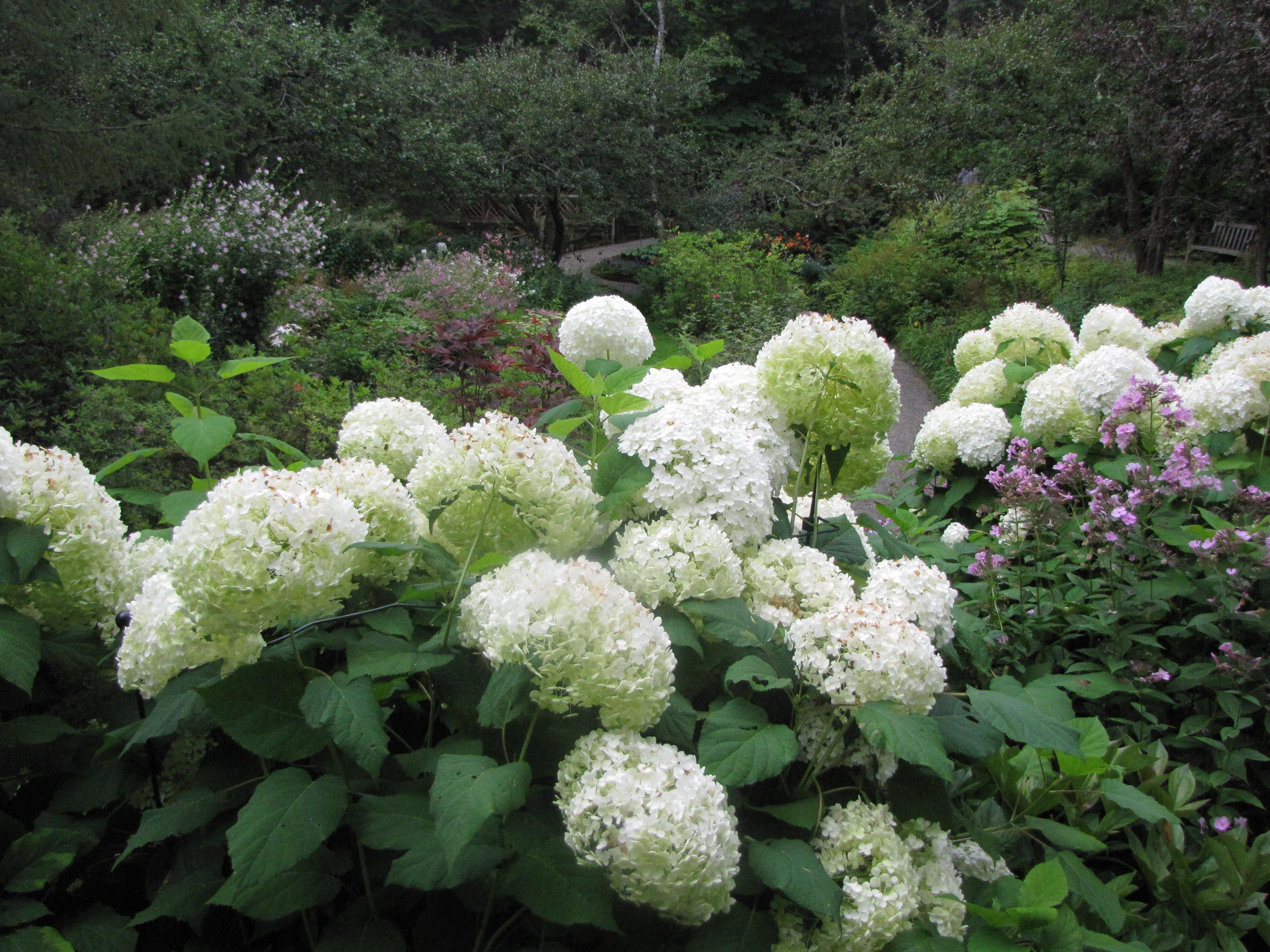 File am nagement paysager dans les jardins de m tis for Amenagement jardin 35