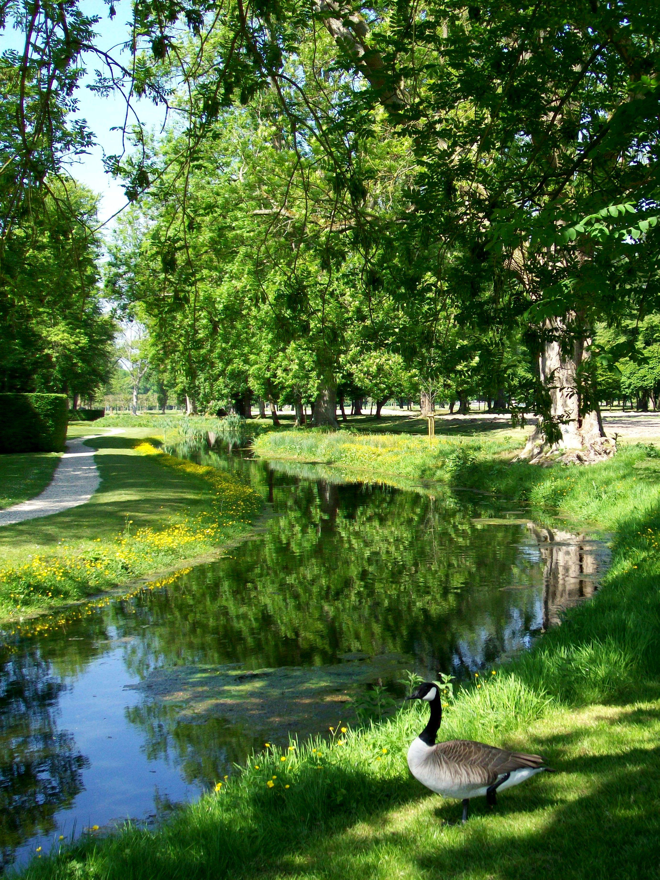 File Ch¢teau de Chantilly jardin anglo chinois canal autour du