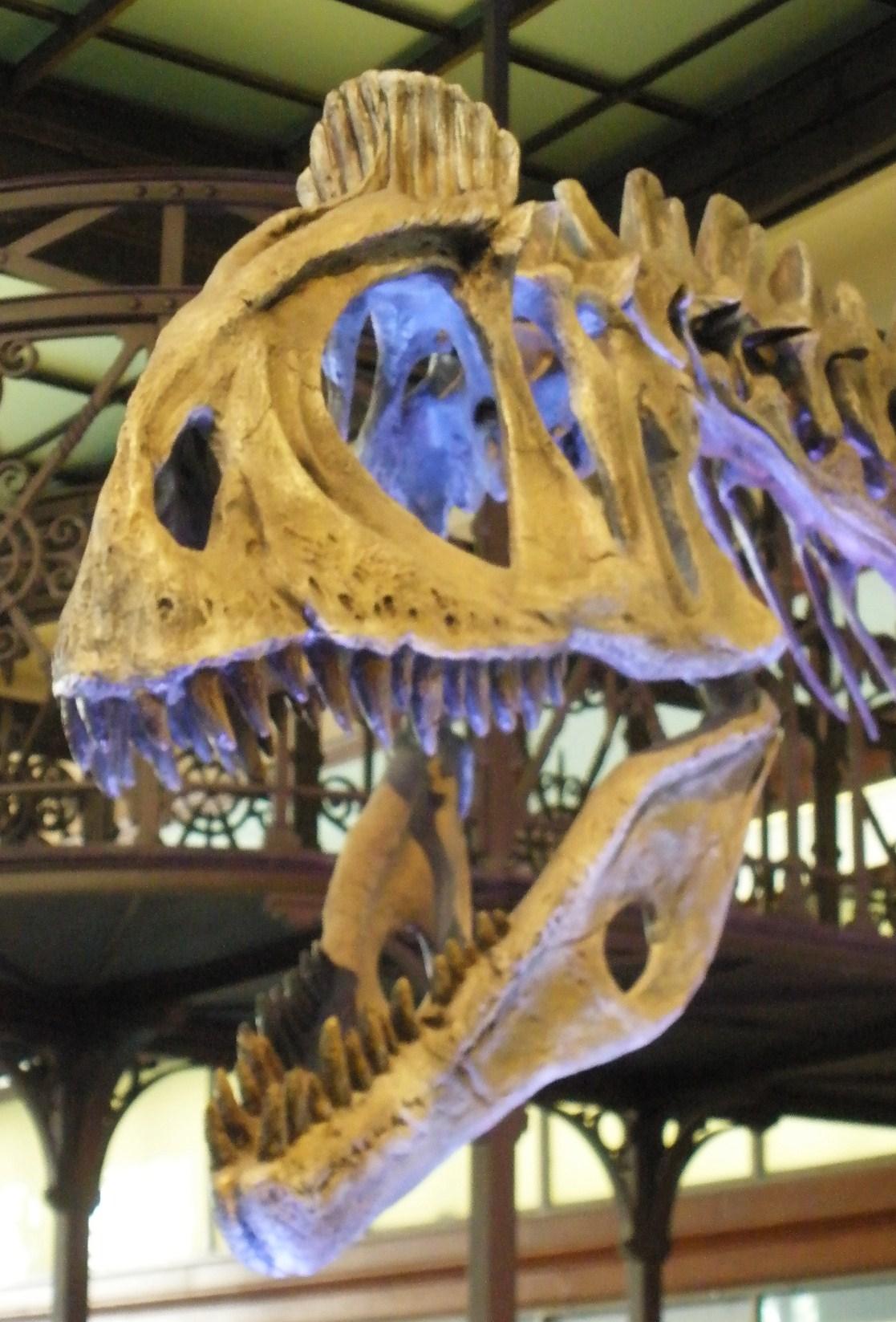 Cryolophosaurus ellioti by Telera1701 on DeviantArt