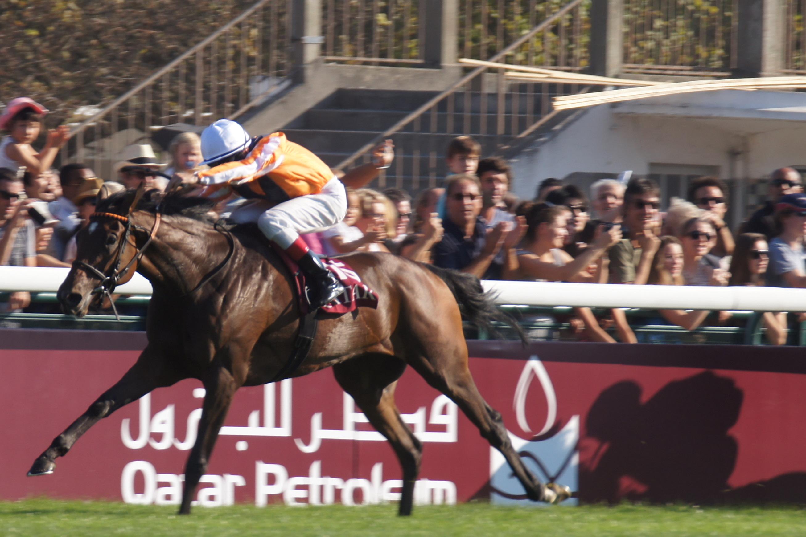 Danedream qui remporte le pronostic PMU pour le Prix de l'Arc de Tromphe 2011