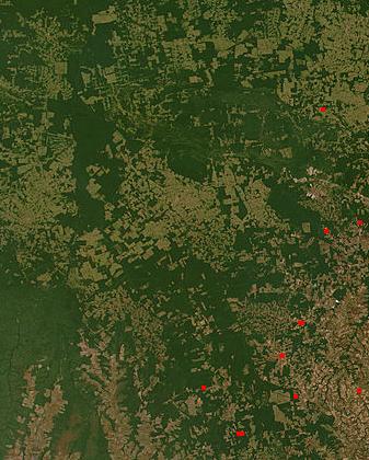 File:DeforestationinBrazil2.jpg