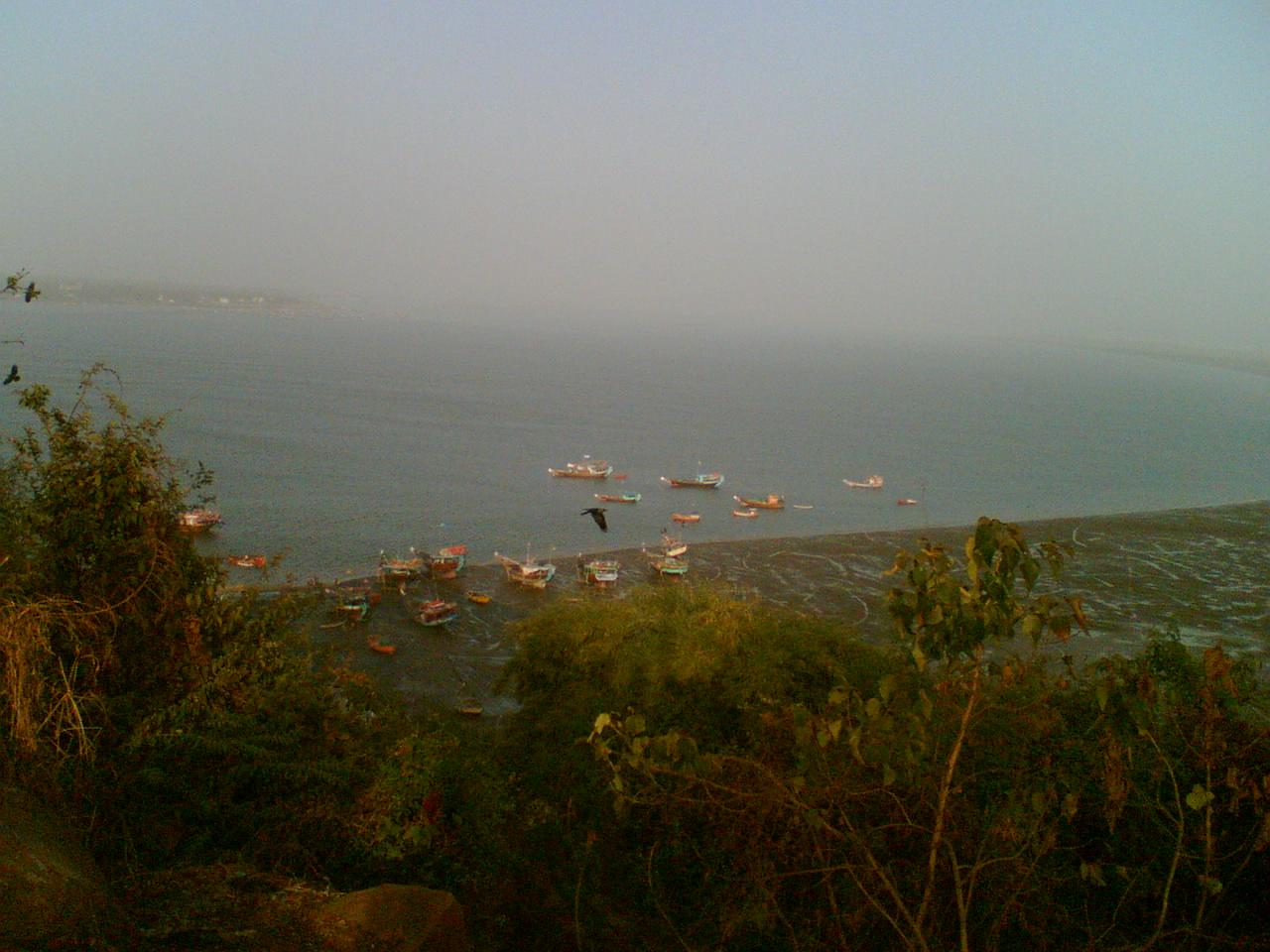 Fishing in Gorai Beach, Mumbai.jpg