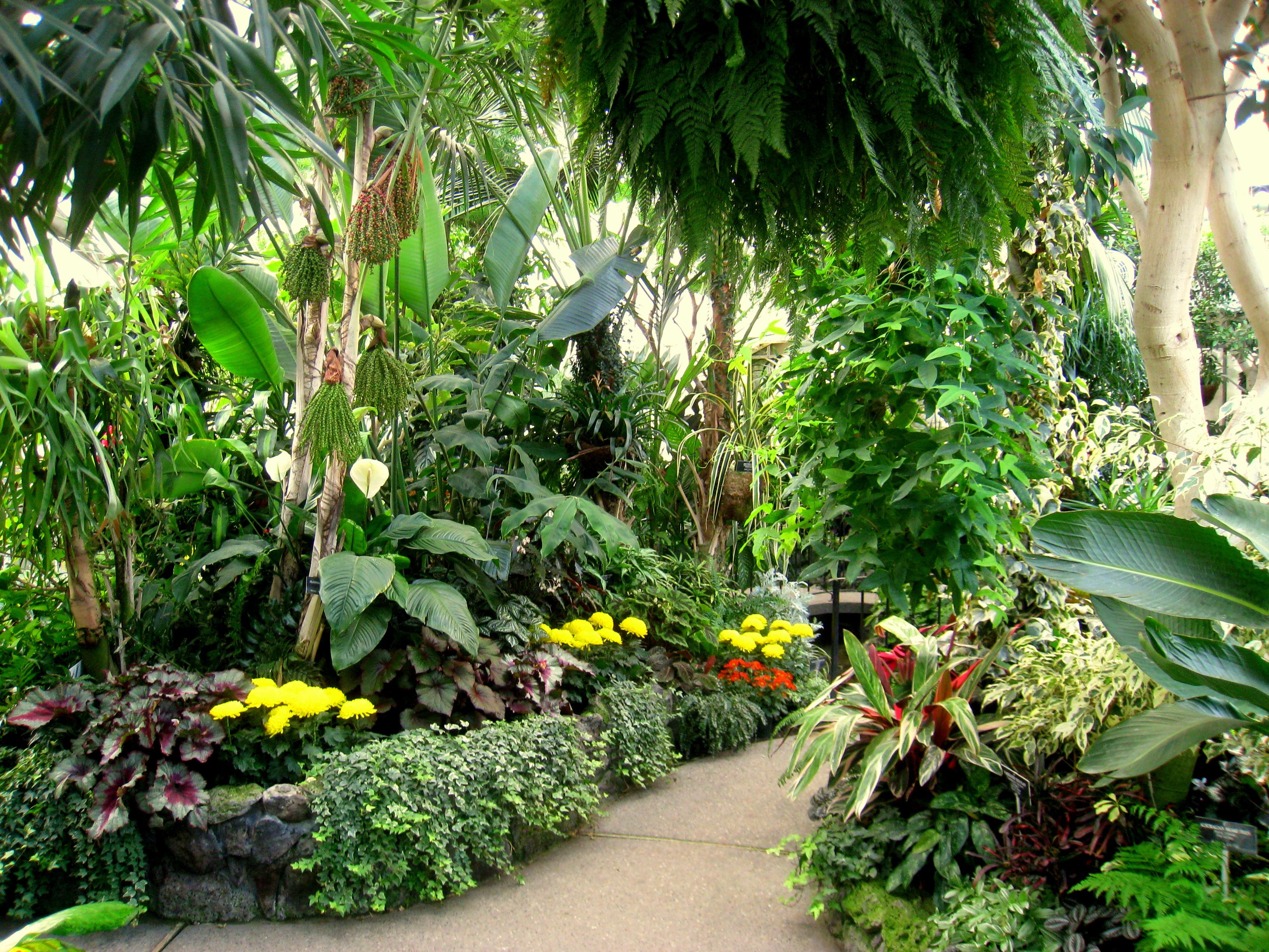 Tropical Landscape Design South Africa