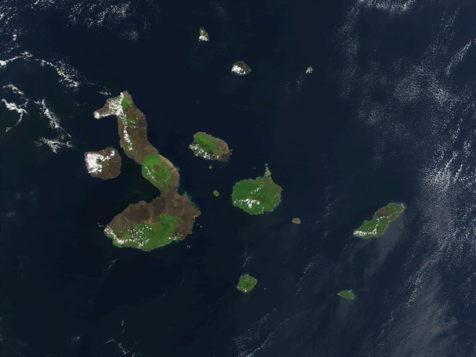 NASA Satellite photo