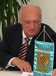 József Gráf Hungarian politician