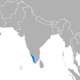 Malayalam - Wikipedia