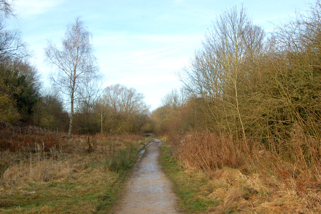 Looking north along trackbed of ex-Great Central Railway, Rugby - geograph.org.uk - 1691926