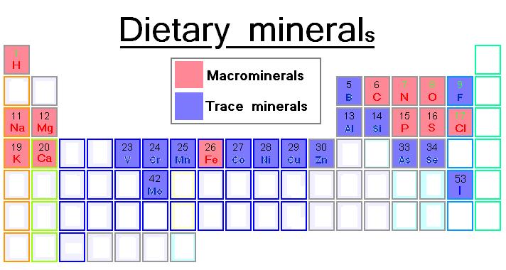 写真:食事から摂るミネラル