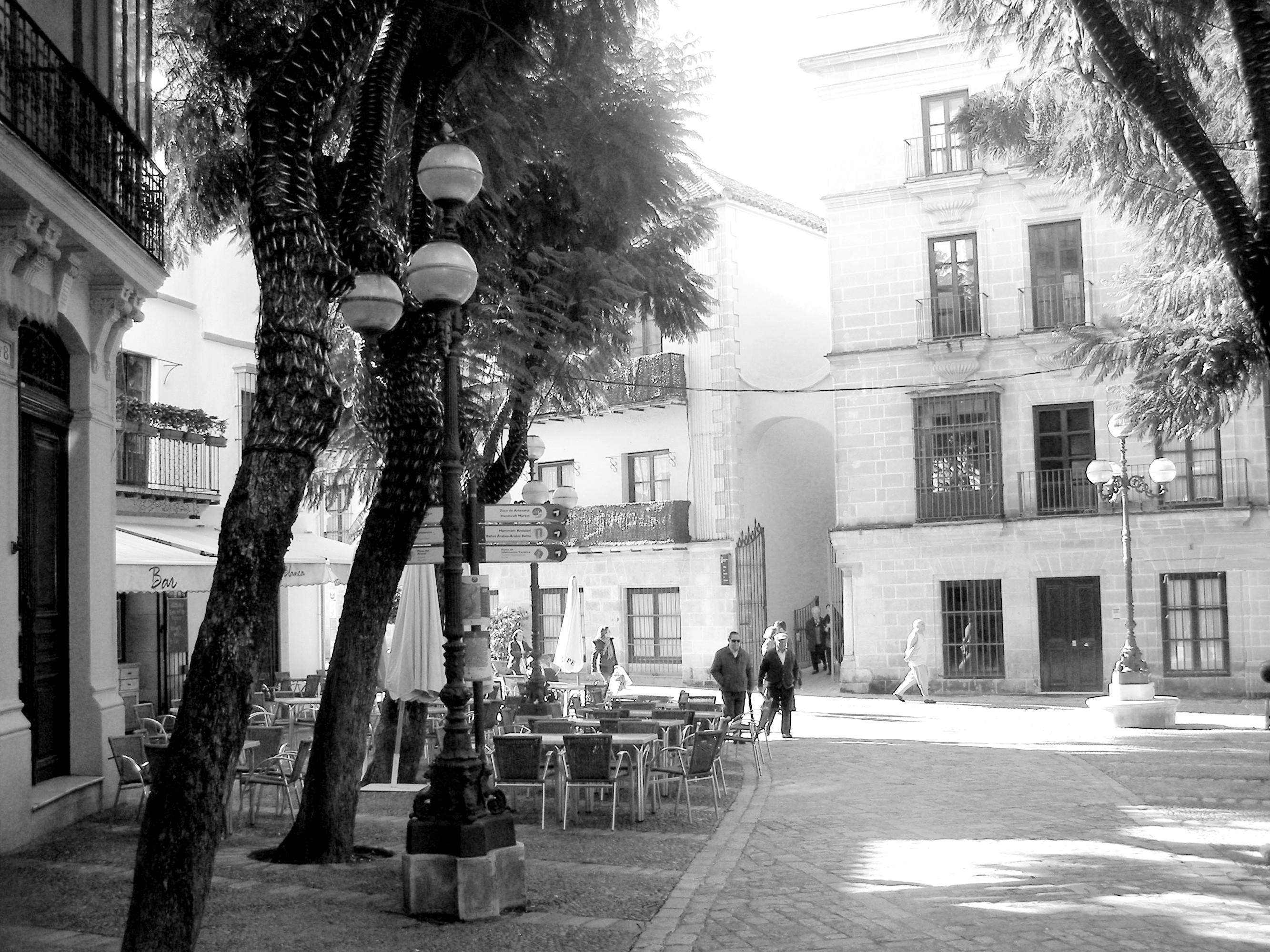 Archivo:Plaza de la Yerba Jerez blanco y negro.JPG - Wikipedia, la ...