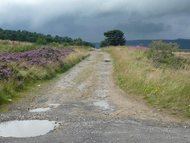 Ramsden Road, Holme - geograph.org.uk - 931060