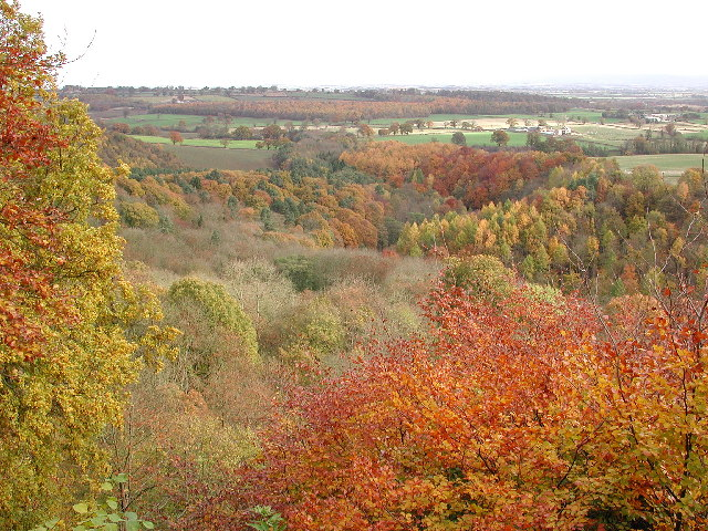 The Ure Valley from Mowbray Point - geograph.org.uk - 114131