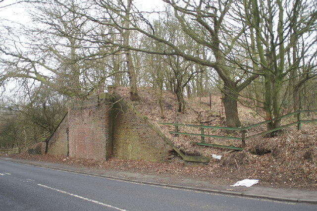 File:The old railway to the pit - geograph.org.uk - 118439.jpg