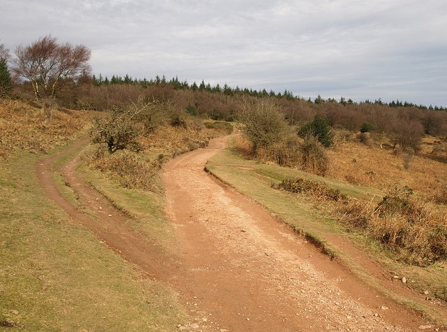 Track junction near Wills Neck - geograph.org.uk - 1187846