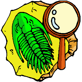 file trilobite clipart png wikimedia commons rh commons wikimedia org trilobite fossil clip art fossil fuels clipart
