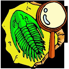 File:Trilobite clipart.png
