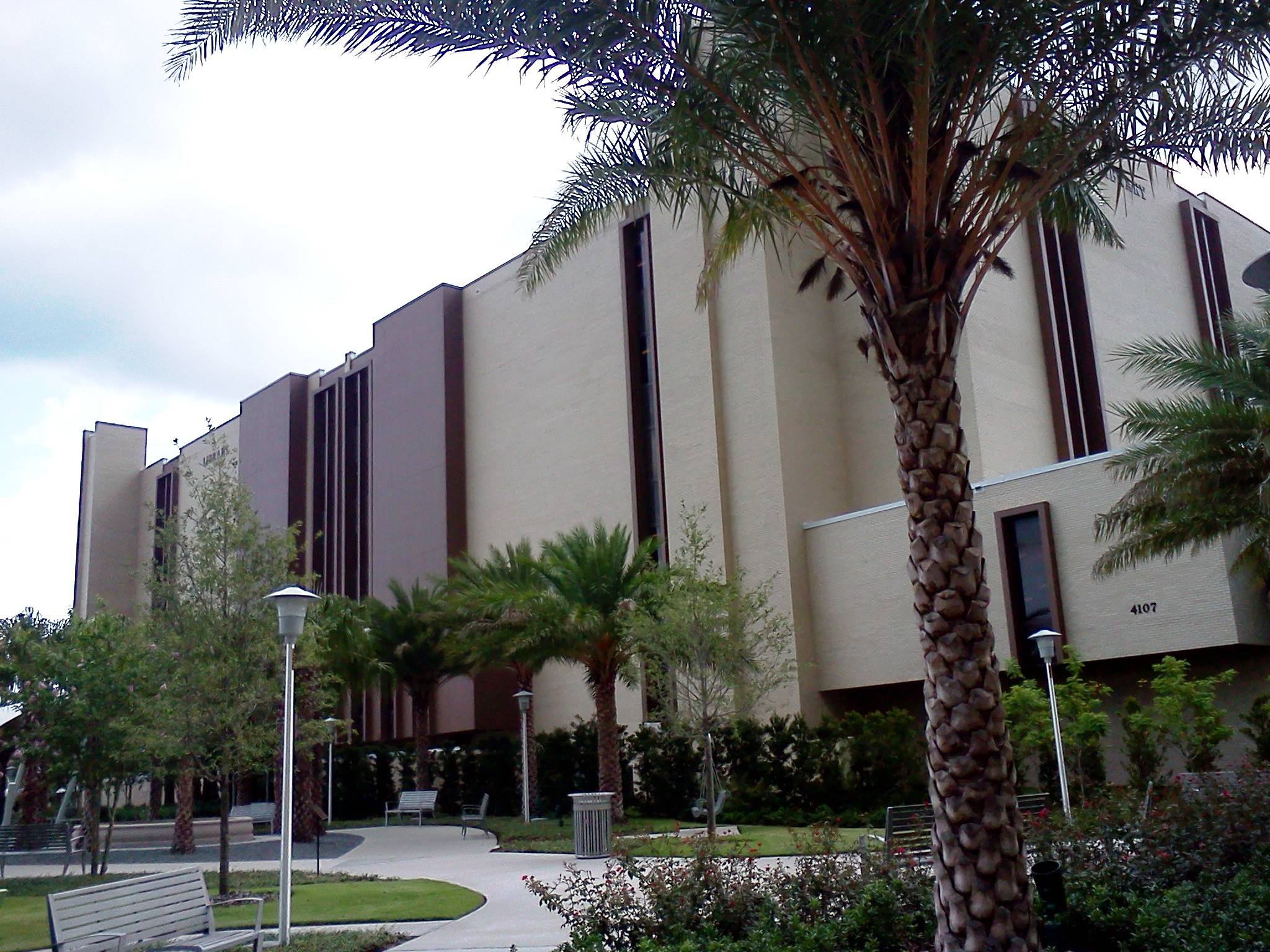 Usf Library Study Rooms