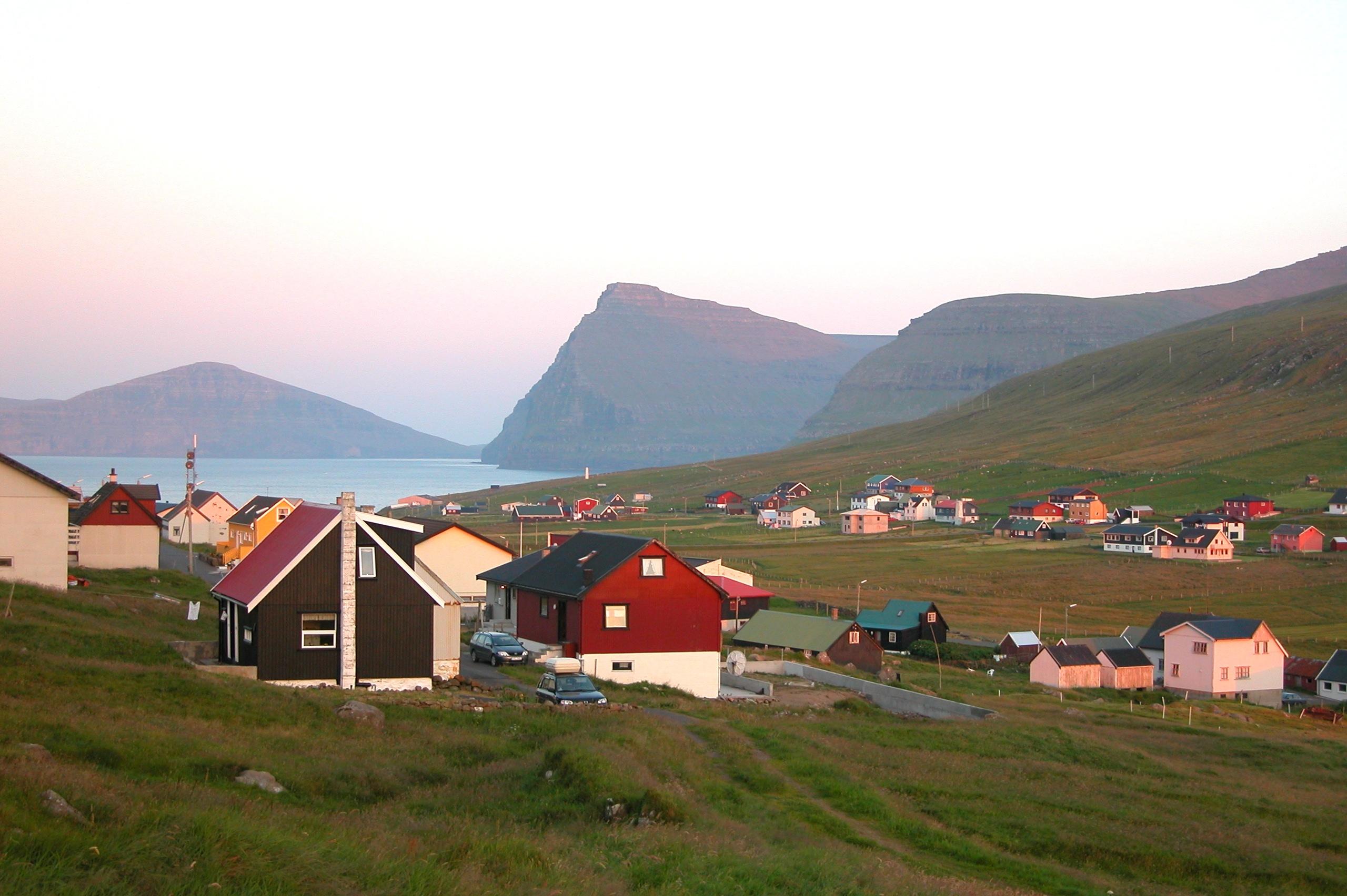 Viðareiði
