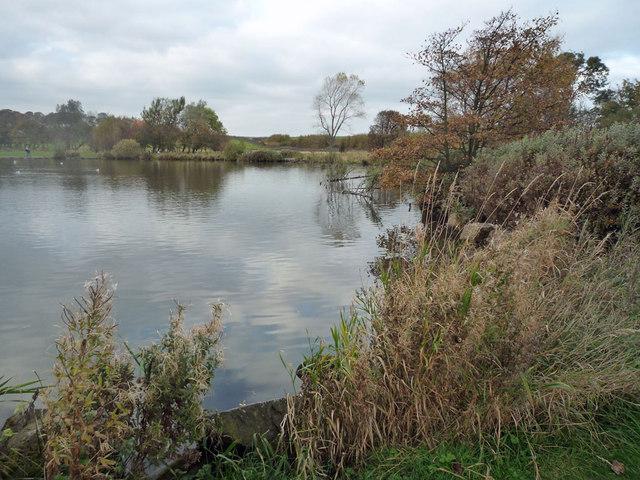 Yeadon Tarn on an autumnal day - geograph.org.uk - 1542620