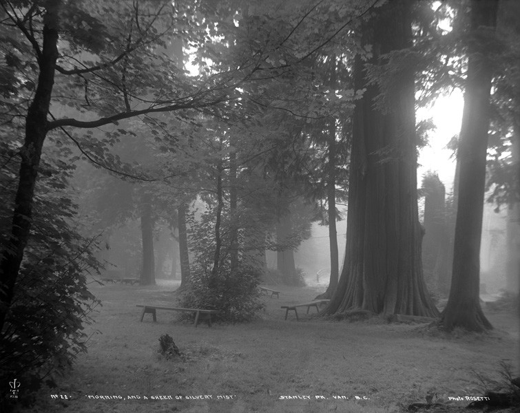 "Morning Mist >> File:""Morning and a Sheen of Silvery Mist"", Stanley Park, Vancouver, B.C..jpg - Wikimedia Commons"