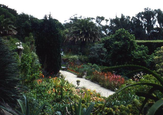 Abbey Gardens, Tresco - geograph.org.uk - 928163