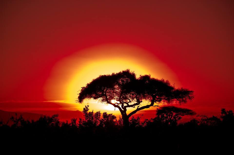 Resultado de imagen para Kenya sunset