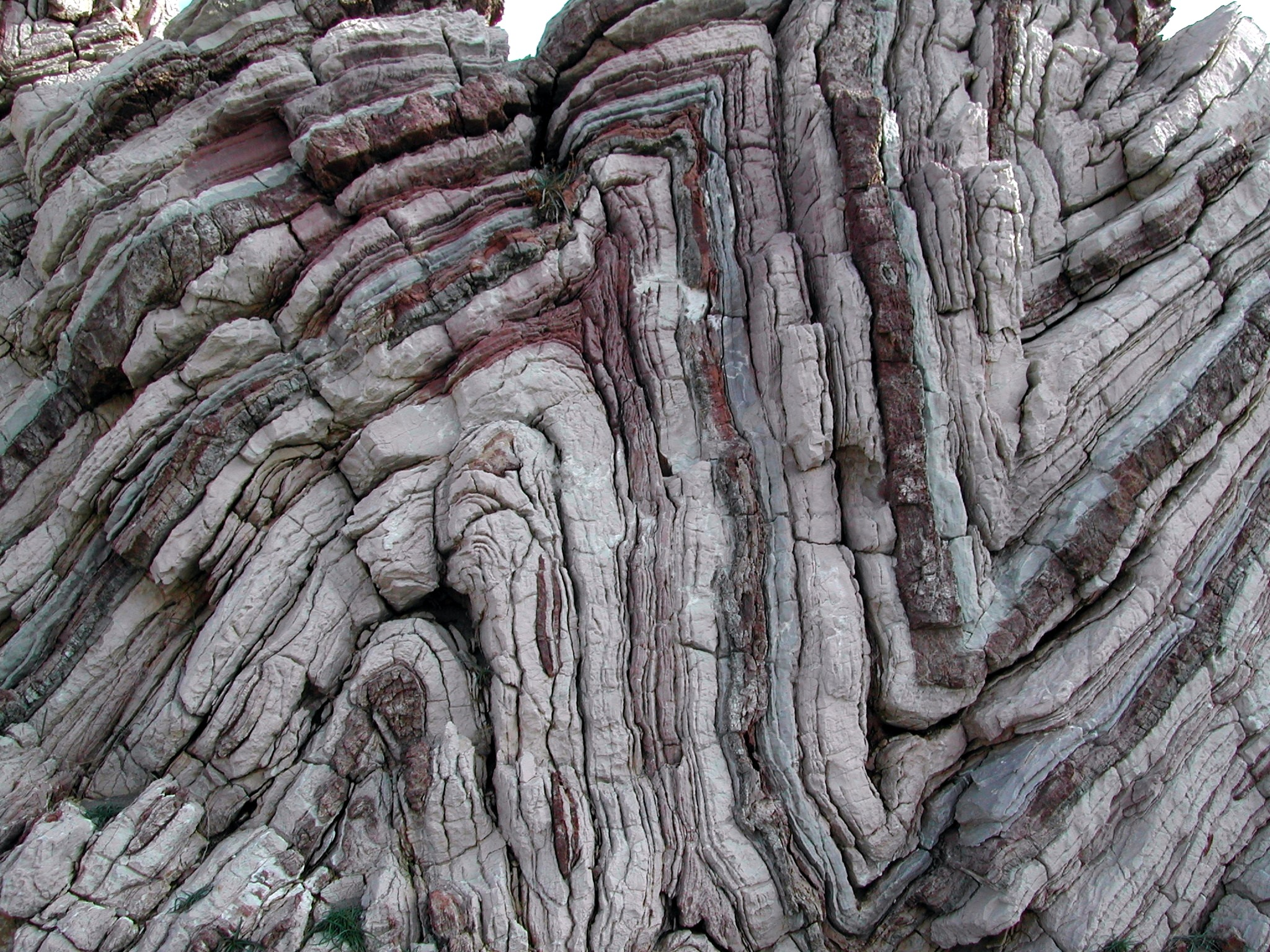 anticline - definition - What is - photo#20