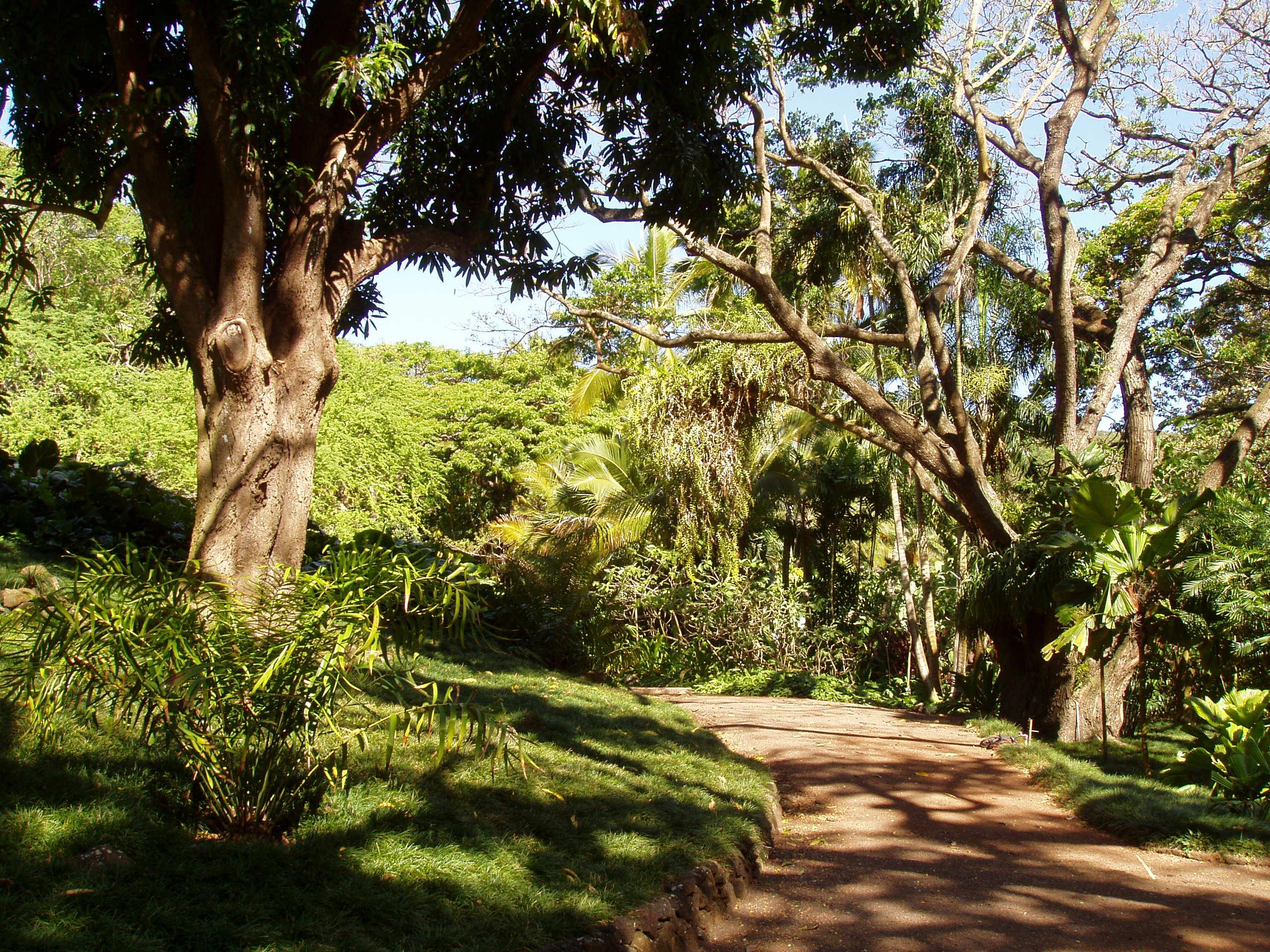 File Allerton Garden Kauai Hawaii Garden Walk JPG Wikimedia Commons
