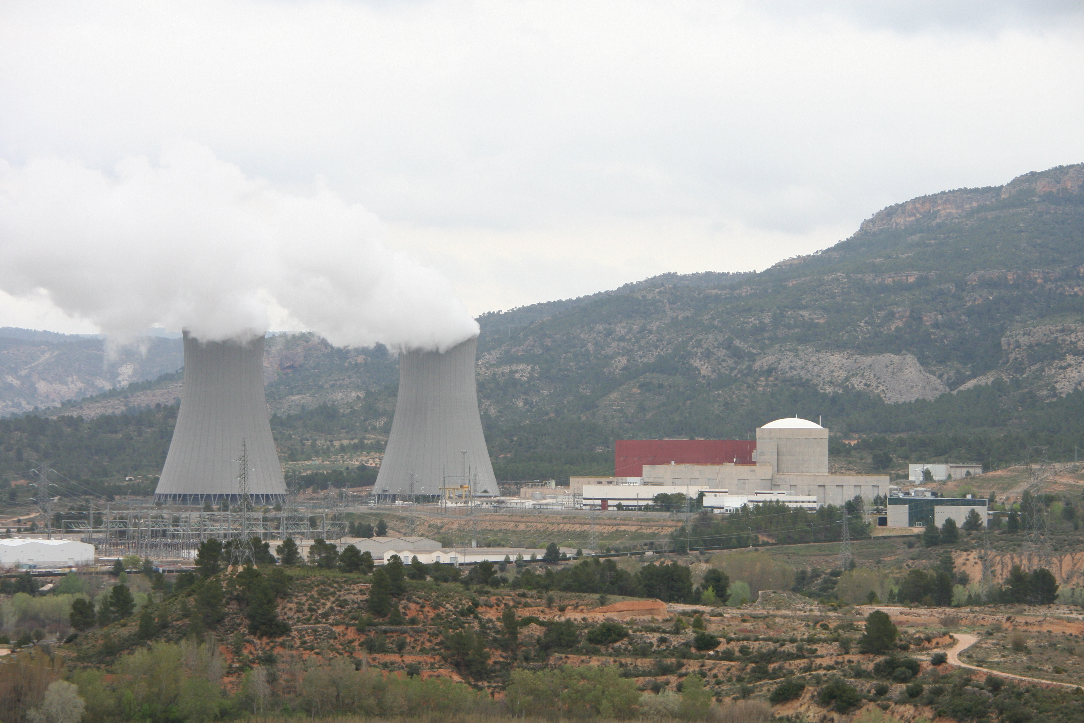 File:Cofrentes nuclear power plant - General view.JPG