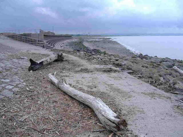 File driftwood at severn beach 444440 for Fishing beaches near me