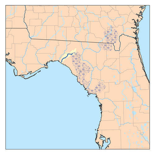 Florida Rivers Map.Econfina River Wikipedia