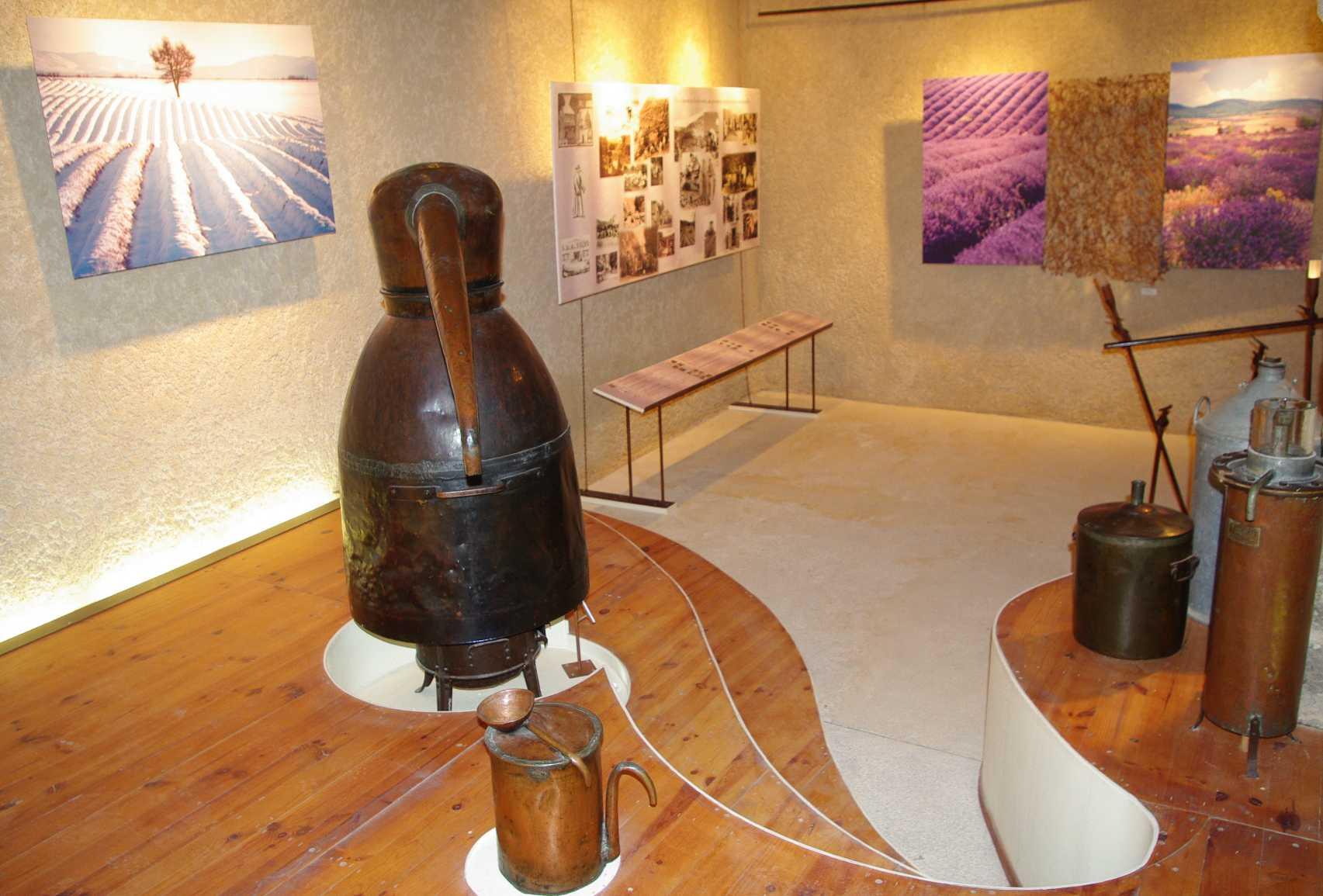 File exposition permanente lavandes et plantes for Plantes aromatiques