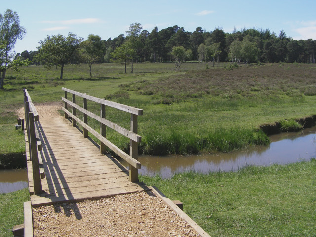 Footbridge over Ober Water, Ferny Knap, New Forest - geograph.org.uk - 191092