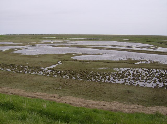 Frampton Marsh - geograph.org.uk - 431800