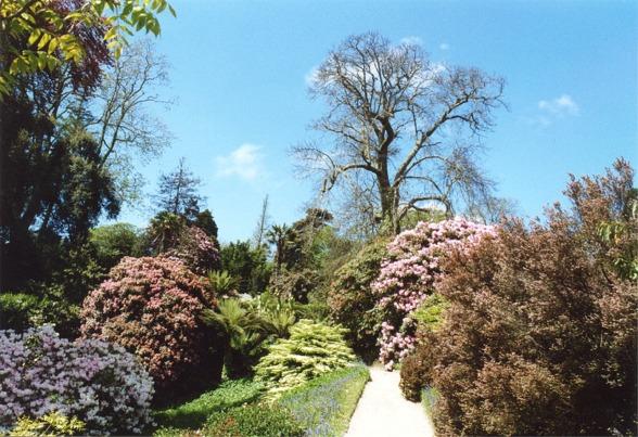 Glendurgan Garden, Cornwall - geograph.org.uk - 349411