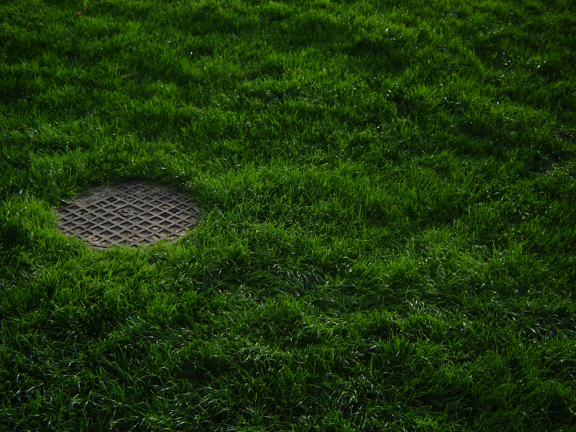 http://upload.wikimedia.org/wikipedia/commons/b/b2/Grass_and_Manhole_Cover.JPG