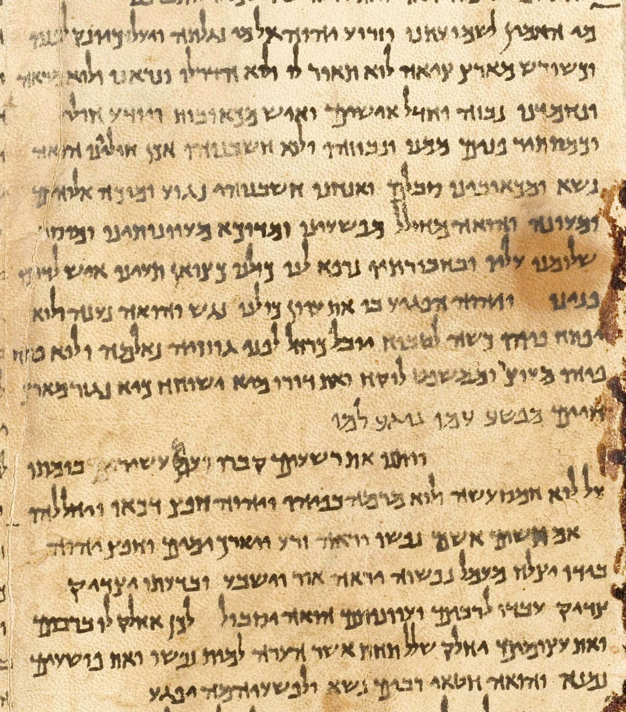 a report on the dead sea scrolls In the dead sea scrolls, professor gary a rendsburgandmdasha dedicated dead sea scrolls scholar who has spent decades immersed in the study of this amazing findandmdashtells you what the scrolls are and what they contain, and describes the intriguing story of how their unparalleled insights into religious and ancient history came into focus.