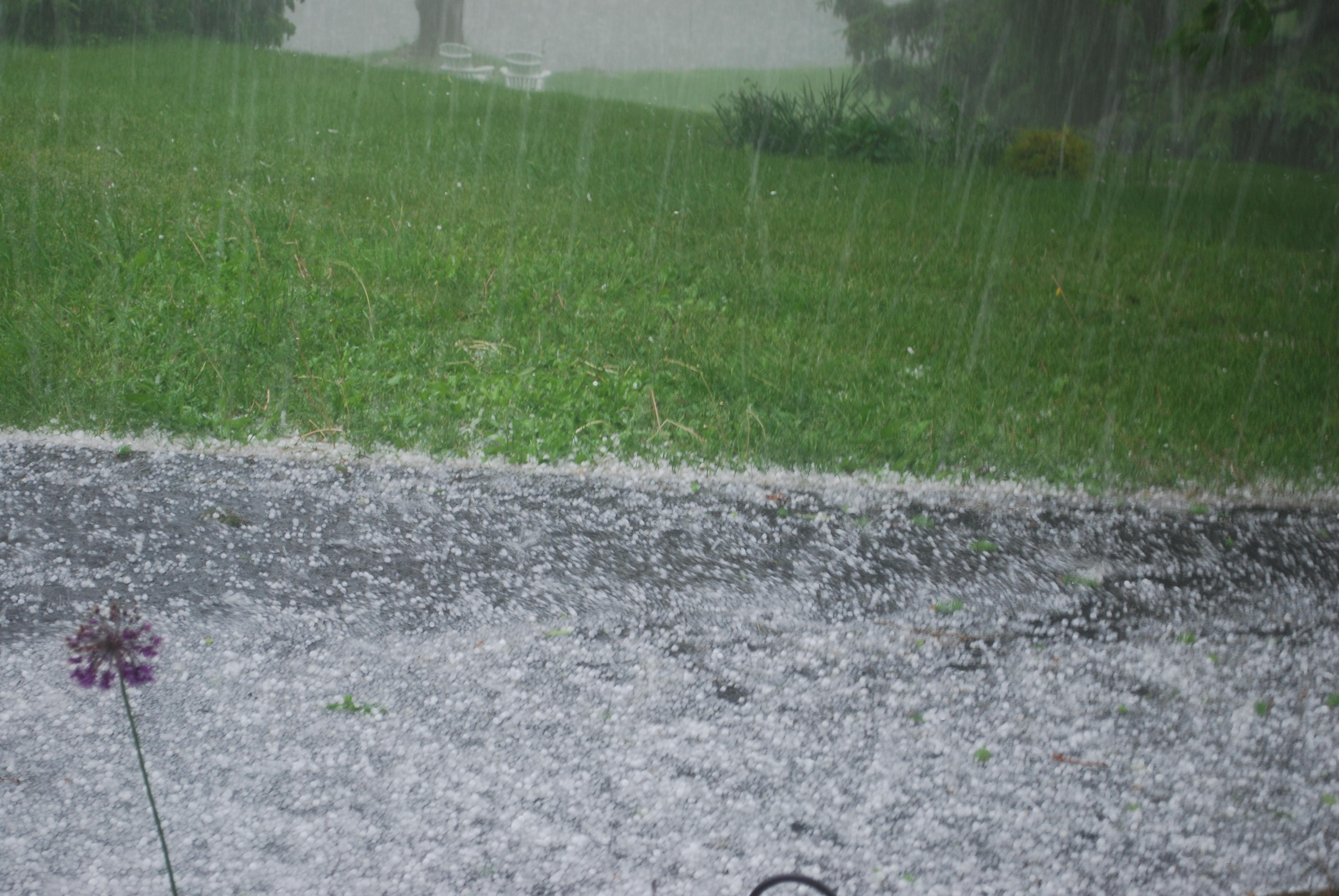 Hail Storm In Colorado  Car Dealership Kent
