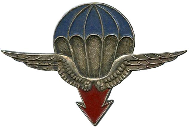 25e DAP (Division Aéroportée - 1946 à 1948) Insigne_25%C2%B0_DAP
