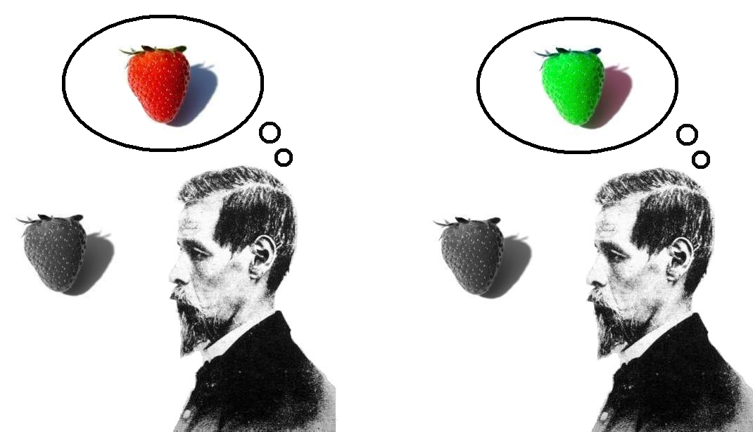 https://upload.wikimedia.org/wikipedia/commons/b/b2/Inverted_qualia_of_colour_strawberry.jpg