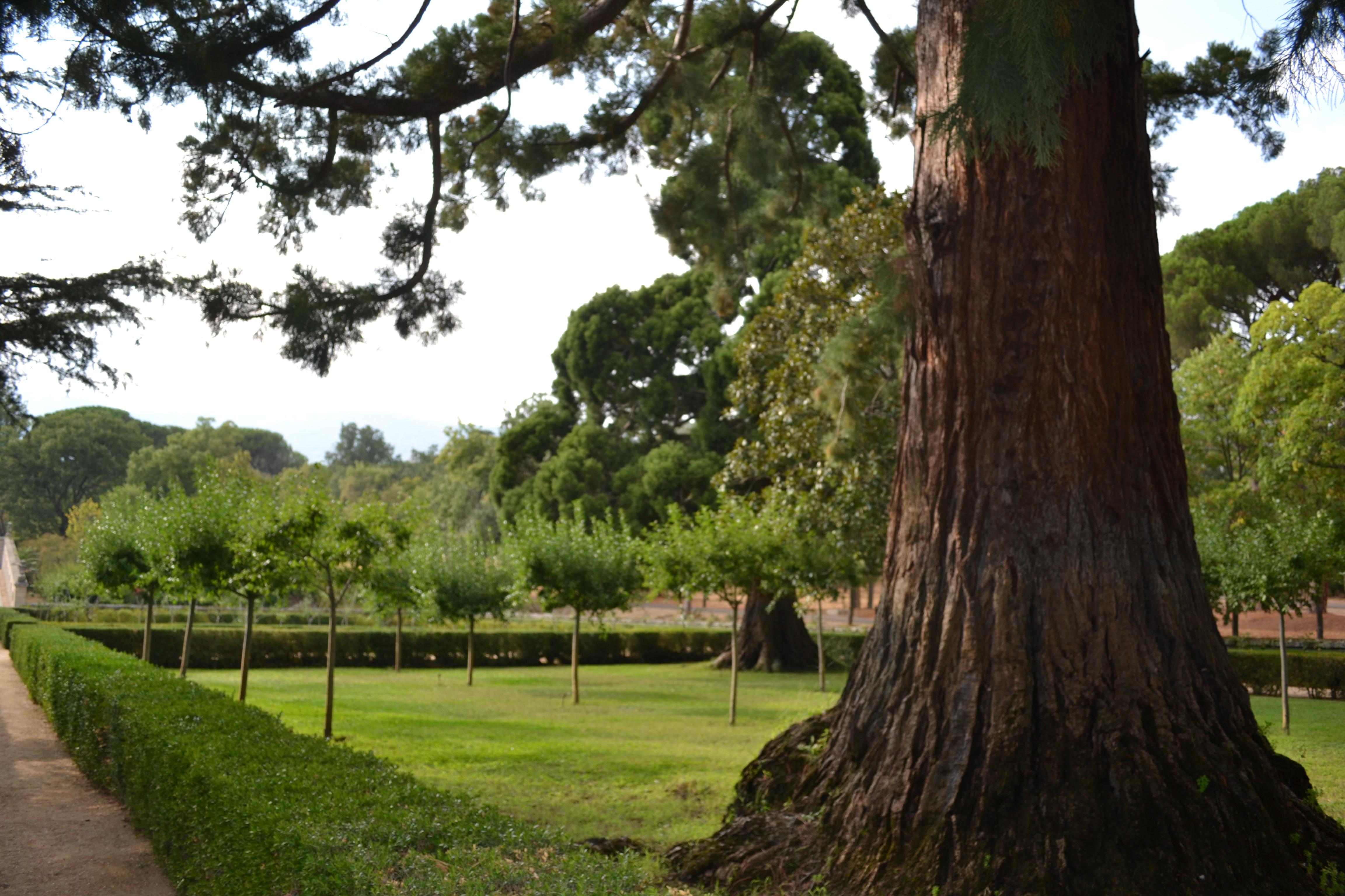 File jard n de la casita del pr ncipe el escorial 06 jpg - Casitas para el jardin ...