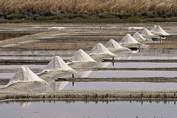 "The salt marshes and l'or blanc (""White Gold"") salt are important natural resources of the Île de Ré"